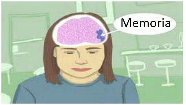 Iată secretul îmbunătăţirii memoriei cu 80%, activităţii creierului, vederii şi regenerării oaselor - Sanatosi.com