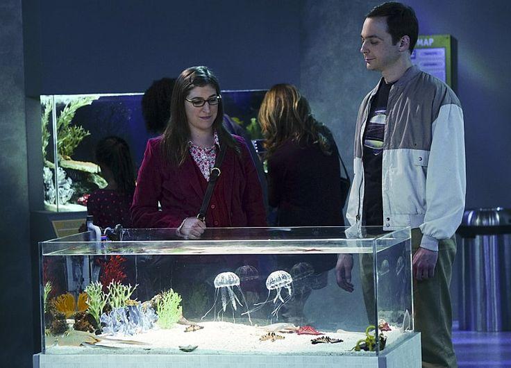 "The Big Bang Theory 9×09, ""The Platonic Permutation"""
