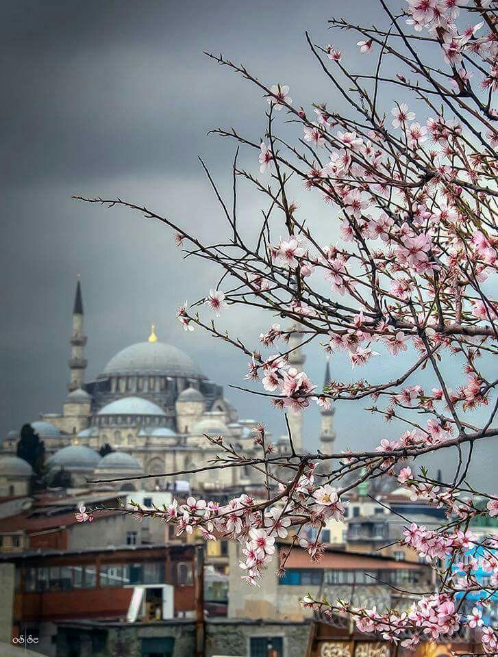 Foto Osman Topçu İstanbul