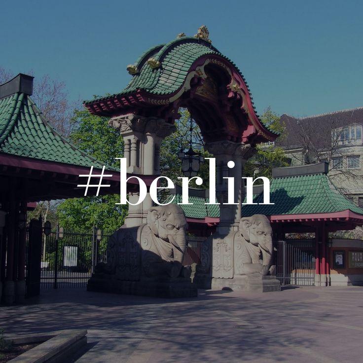 Heute das schöne Wetter genießen mit ein Spaziergang durch den Berliner ZOO Der Zoologische Garten Berlin im Berliner Ortsteil Tiergarten (Bezirk Mitte) ist der älteste Zoo ... Im Zweiten Weltkrieg wurde durch Luftangriffe der Alliierten ein Großteil des Zoos zerstört. .... üppiger Vegetation.  #BERLIN #ZOO http://tier-zuhause.de/