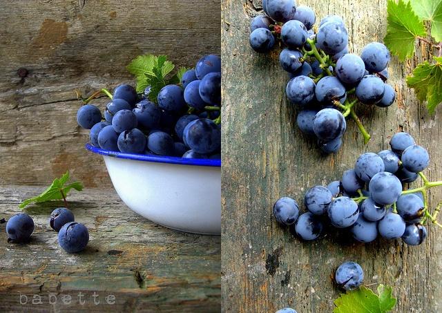 szőlő by babettee, via Flickr