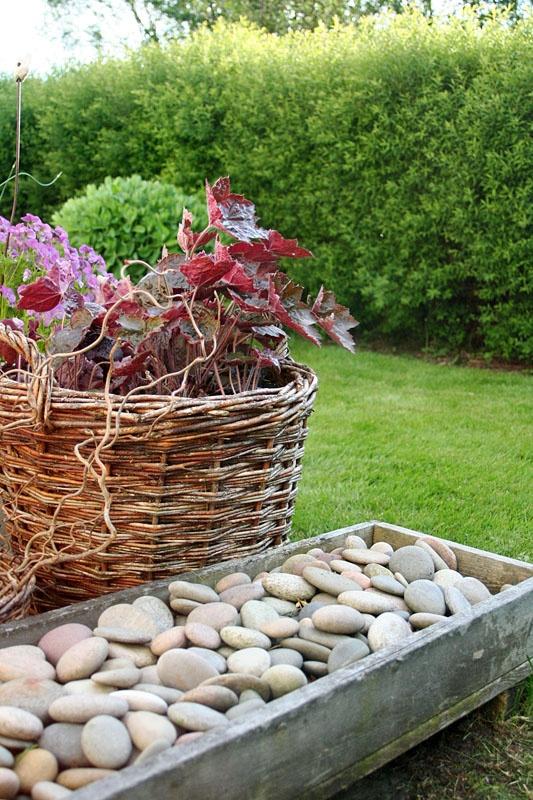 Lindas trädgårdsblogg | trädgård - trädgårdsprojekt - trädgårdsdesign: En kväll i Infings trädgård