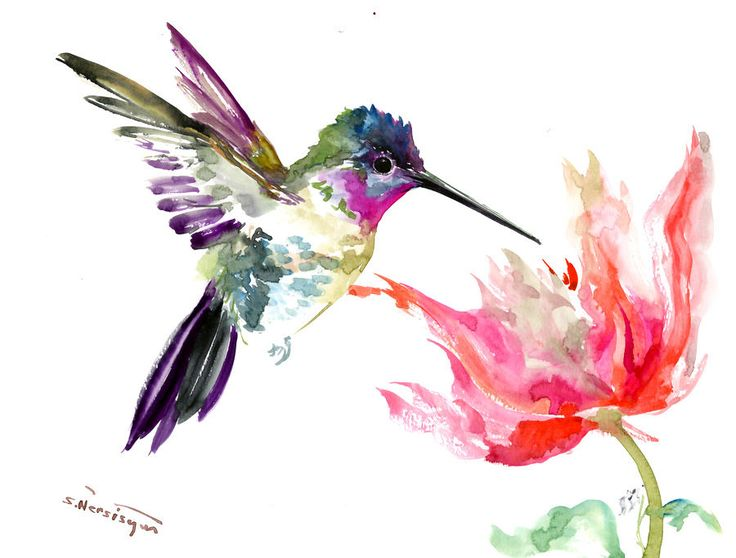 Hummingbird and Pink Scarlet Flower- Artwork - original one of  a kind hummingbird art minimalist painting watercolor artwork bird art birds by ORIGINALONLY on Etsy