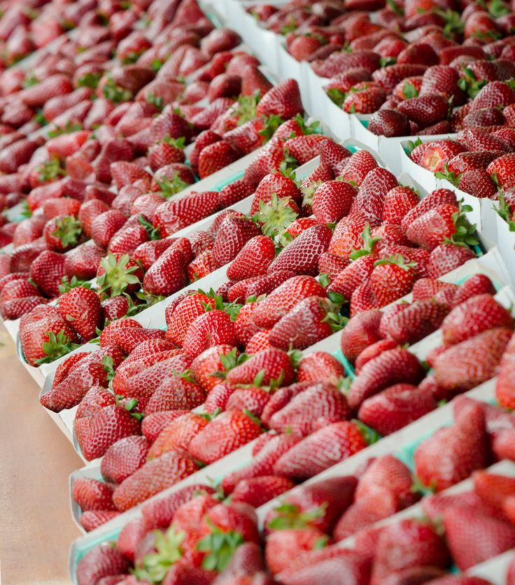 Strawberries at Harry's Berries - Santa Monica Farmers Market