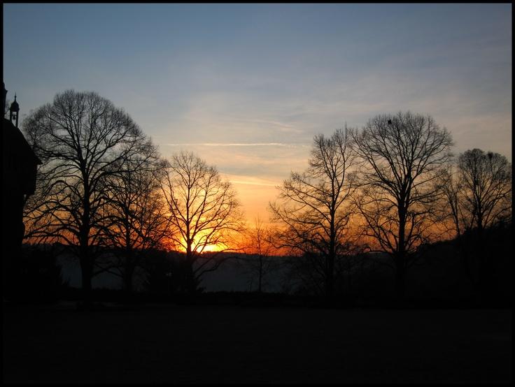 Esslingen, Stuttgart, Germany, Sunset, Trees