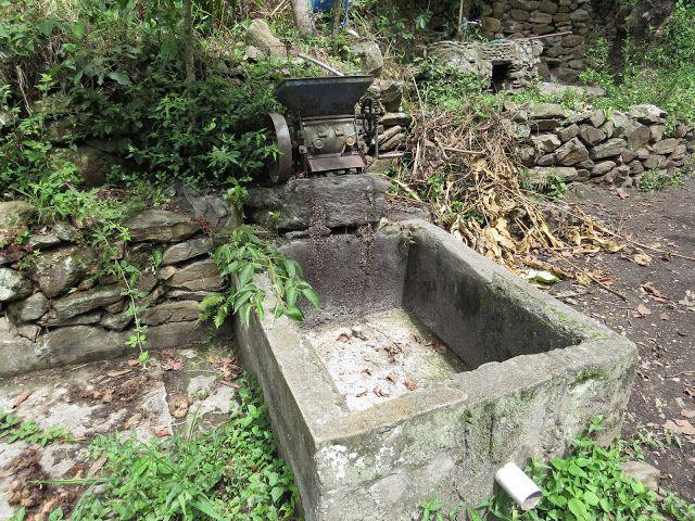 FOTOS DE AMERICA LATINA: Maquina para de descascarar granos de café verde M...