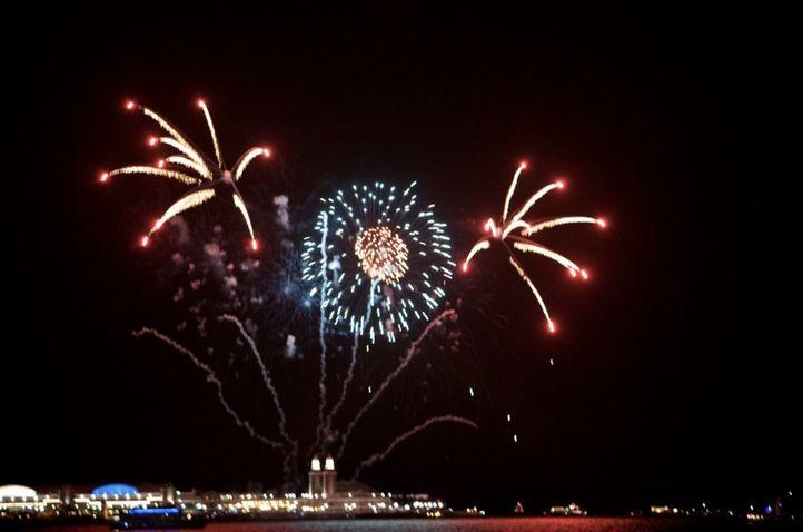 Chicago Fireworks   Chicago Wedding Fireworks   Adler Planetarium Wedding Fireworks   Navy Pier at night