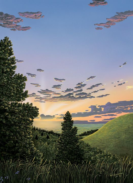 Rising From The Southern Plains Upper Reaches Of Cypress Hills Are Highest Point
