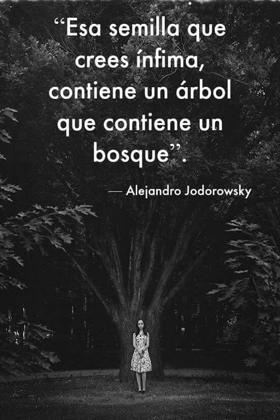 """""""Esa semilla que crees ínfima, contiene un árbol que contiene un bosque"""". - Alejandro Jodorowsky.                                                                                                                                                      Más"""