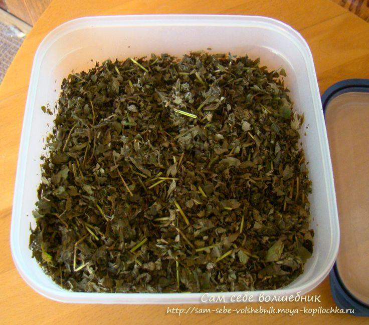 Как приготовить целебный ферментированный чай на зиму