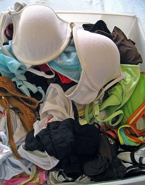 Misteri Kehilangan Pakaian Dalam Wanita Akhirnya Terungkai. Misteri kehilangan pakaian dalam milik seorang remaja perempuan yang dijemur di ampaian rumahnya