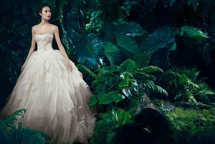 Vera Wang   Wedding Dresses, Bridal Gowns, Designer Clothing #weddingdress #gown #verawang