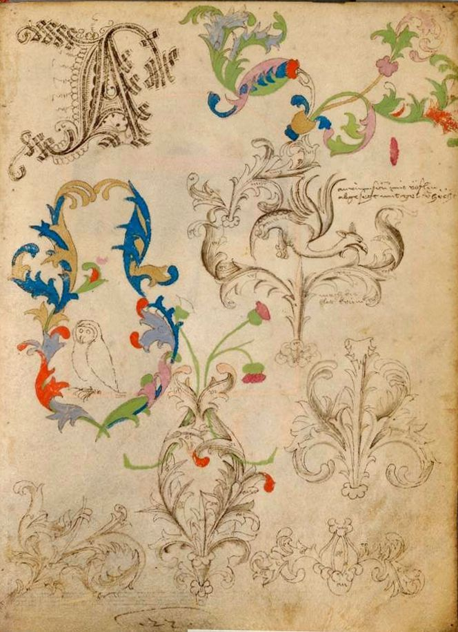 """The Illuminated Sketchbook of Stephan Schriber, 1495. Richly cadeled """"A"""" and decorations. This page is not only beautiful but interesting, ..."""