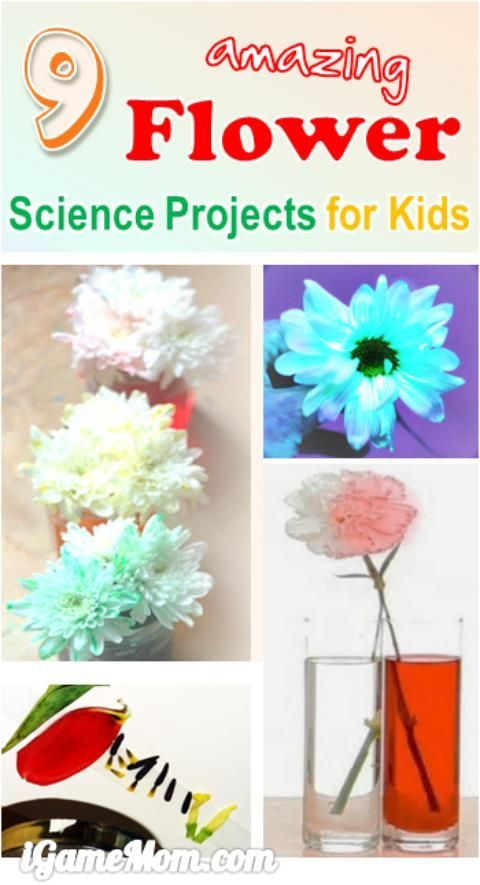 how to build a power flower in project