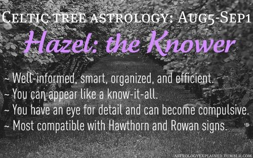 Celtic tree astrology - Hazel