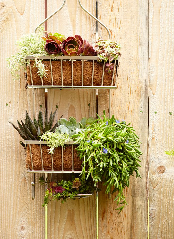 Don't throw out that old shower caddy! Repurpose it into a cute hanging garden instead. These are rustic, easy to make, and are a perfect solution for renters and folks that want to jazz up small spaces. Get the instructions to make the caddy, as well as planting suggestions.