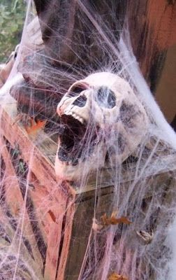 scary screaming skull covered in cob webs... Halloween Decorations: Bathroom Edition from Bathroom Bliss by Rotator Rod