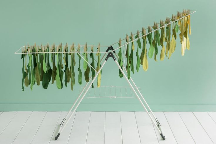 Drying your laundry naturally is just one of those small things you can do at home to make a difference in the world! #LoveNature