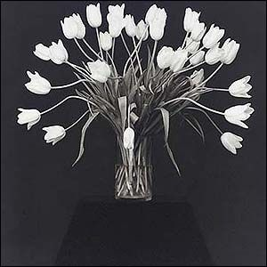 Flowers Robert Mapplethorpe
