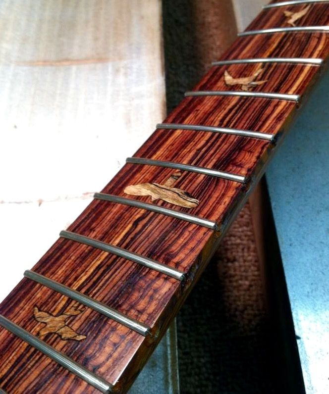 1430 Best Images About Exotic Woods Guitars And Basses