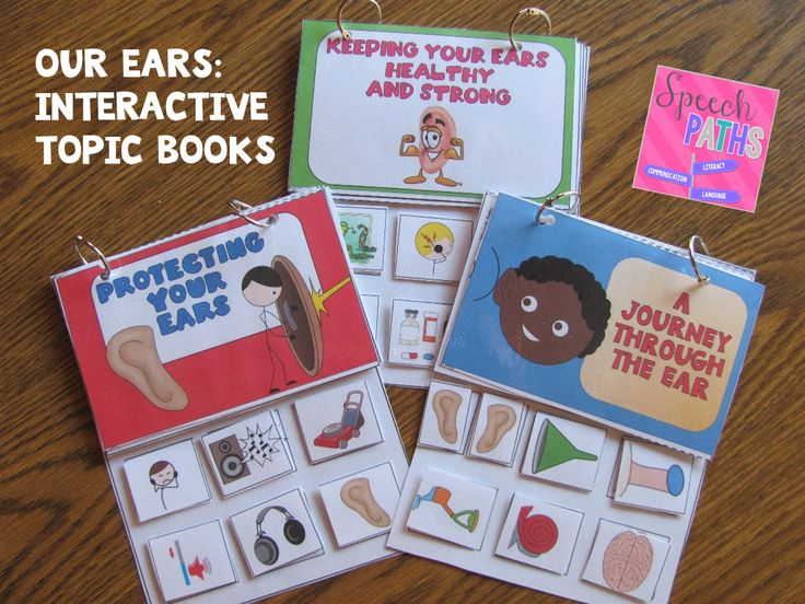Speech Paths: Our Ears & Hearing. Pinned by SOS Inc. Resources. Follow all our boards at pinterest.com/sostherapy/ for therapy resources.