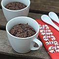 Le fameux mug cake au chocolat ou comment se remonter le moral quand il est au plus bas