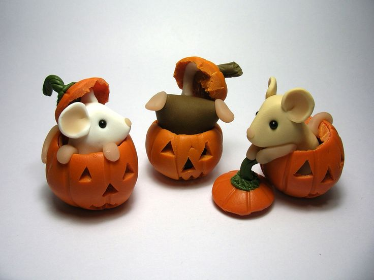 The mice found some more pumpkins to play in :)