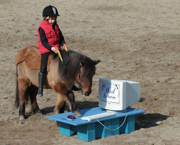 Un poney et sa jeune cavalière, ensemble sur CA ! #chevalannonce #ca #concours #equitation