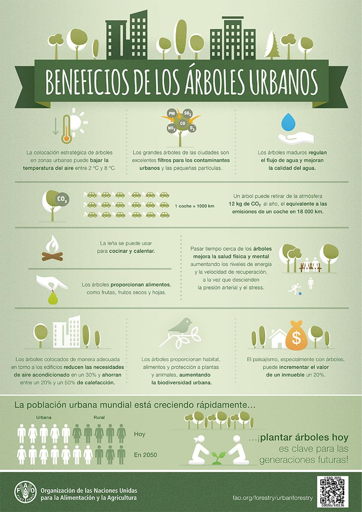 Beneficios de los #árboles #urbanos Benefits of urban #trees #FAO #arboricultura