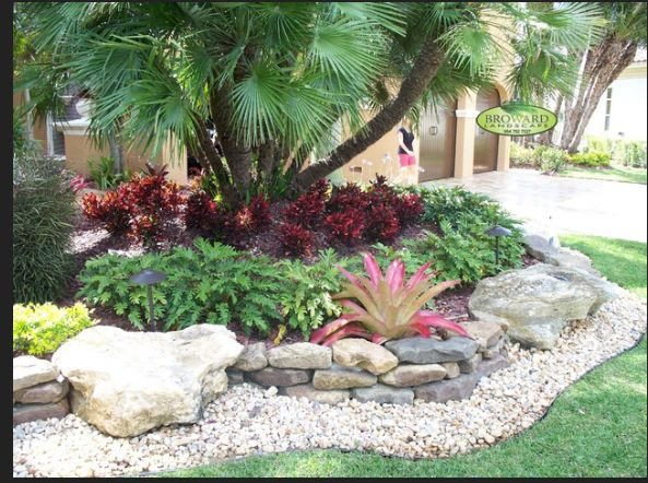 Best Plants For West Central Florida Images On Pinterest - Florida landscaping ideas for front yard