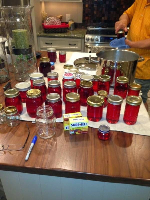 3 Generations of Southern Recipes: May I have a little Mayhaw Jelly Please