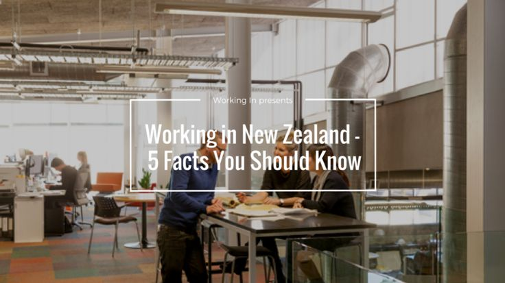 Working in New Zealand – 5 Facts You Should Know