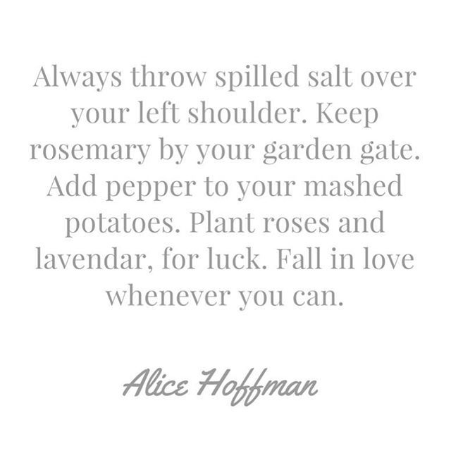 #quote #quoteoftheday #quotes #quotestoliveby #alicehoffman #alicehoffmanquotes #practicalmagic #bookquotes #bookquote #favouriteauthor