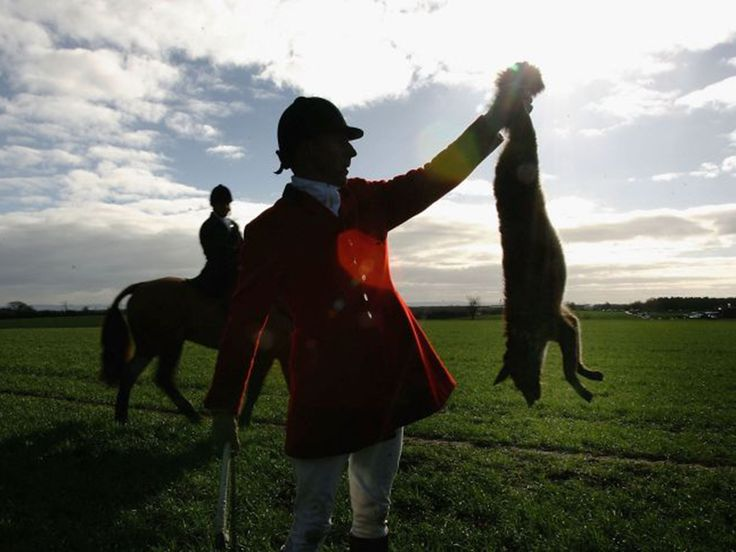 Pro-hunt politicians should stop pretending that legalising fox hunting is about helping farmers, Queen guitarist Brian May has said.