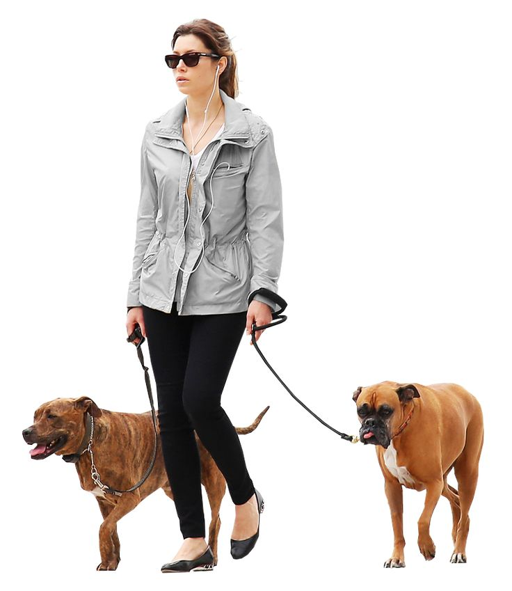 woman dogs gray