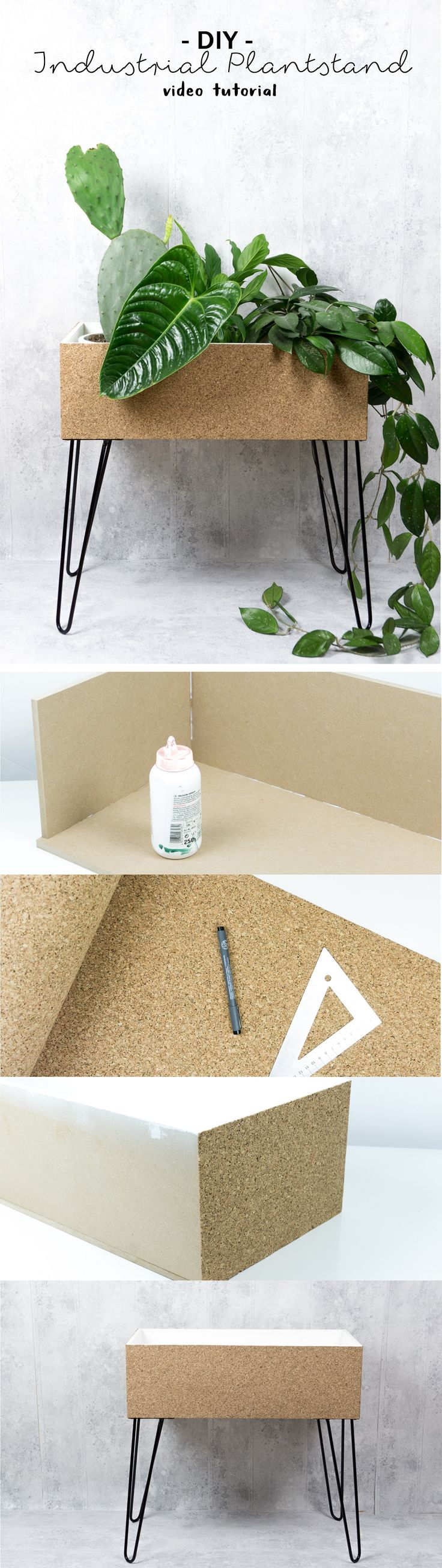 25 best plant decor ideas on pinterest With whirlpool garten mit balkon sanieren schritt für schritt