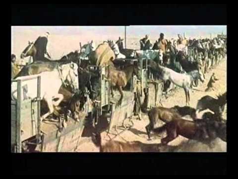 LAWRENCE VON ARABIEN - Deutscher Trailer - YouTube