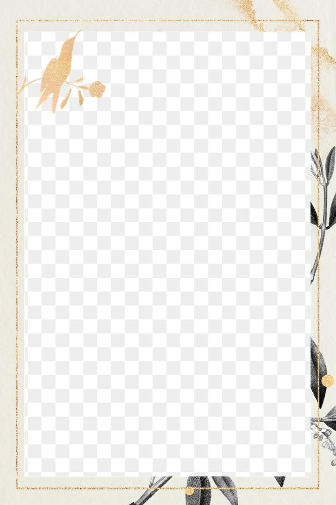 Gold Hummingbird Pattern Frame Png Olive Branches Copy Space Free Image By Rawpixel Com Noon