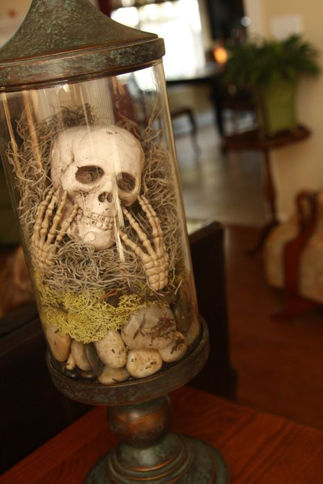 Easy Halloween decor...rocks, skull, Spanish moss.