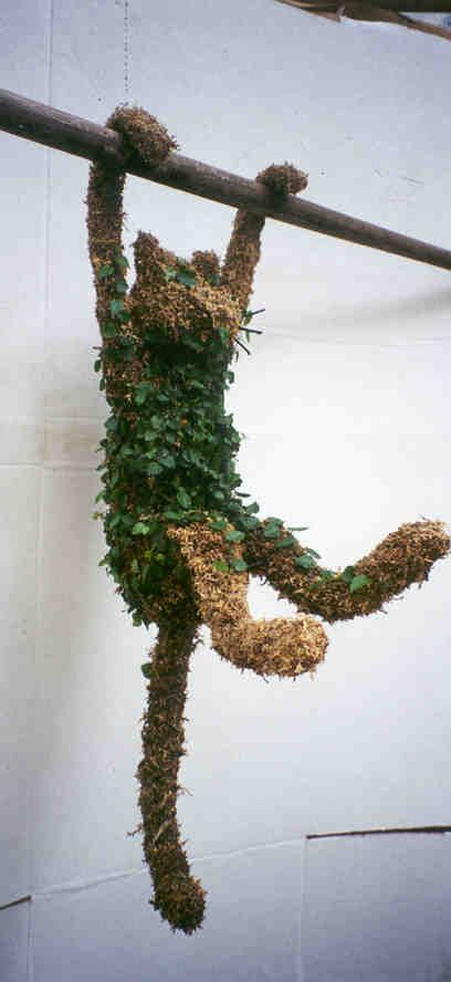 Cat by topiaryinc #Topiary #Cat   Be careful when using chicken wire to make topiary's and sphagnum moss.  I got sporatricosis from it and it was terrible