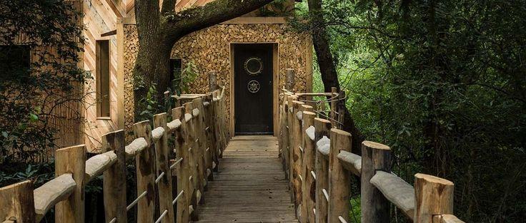 Douche extérieure, poêle à bois, lit douillet... Cette maison de rêve est perchée dans les arbres