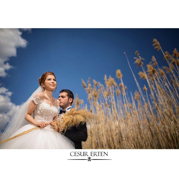 #wedding #weddingstore #weddingankara #gelindamat #gelindamatalbüm #gelindamathikaye #düğünhikayesi #düğünhikayesiankara #dügünbelgeseli #dügünfotografcisi #ve #ankaradüğün #ankarawedding #bride #instagood #instalike #instapic #photo #ankara #ankarawedding #gelindamathikaye #gelindamatfotograflari #gelindamathikaye #awards #wppi2016 #wppi #awards2016 #wishes #wishesdolphin #wisheswedding #wishesweddingankara