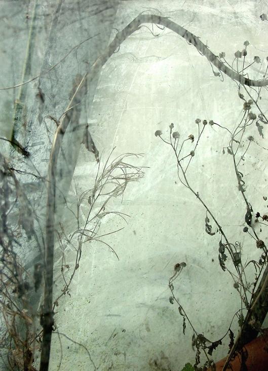 Threshold. Kath Williamson