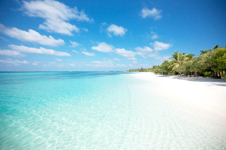 Belle Mare, Mauritius - one of the best beaches of Africa. Perfect for honeymoon or family holiday