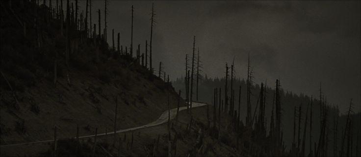 The Road | Beautiful Stills from Beautiful Films
