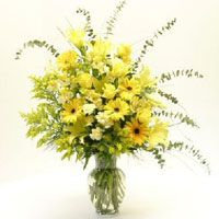 Mellow Yellow Bouquet with vase $79.95  Includes: 5 yellow roses, 3 yellow gerbers, 5 yellow alstromeria, 3 yellow oriental lily. 5 yellow mini-carnations, 5 solidago, accented with eucalyptus, bear grass and assorted greens.