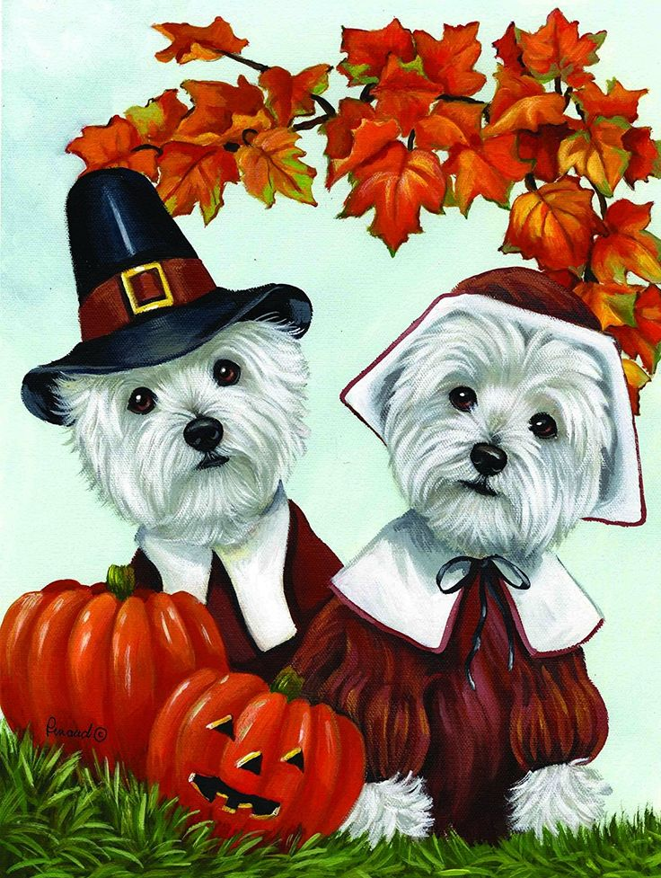 Thanksgiving Dogs And Cats Garden Flags