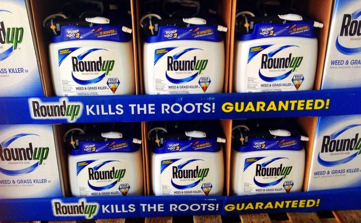 Monsanto Is Trying To Become The Biggest Company In The History Of Agriculture - Modern Farmer