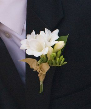 Wedding, Flowers, White, Gold, Boutonniere, The blue orchid, Freesia
