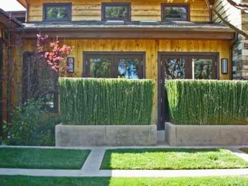 haie de jardin en bambou et brise vue